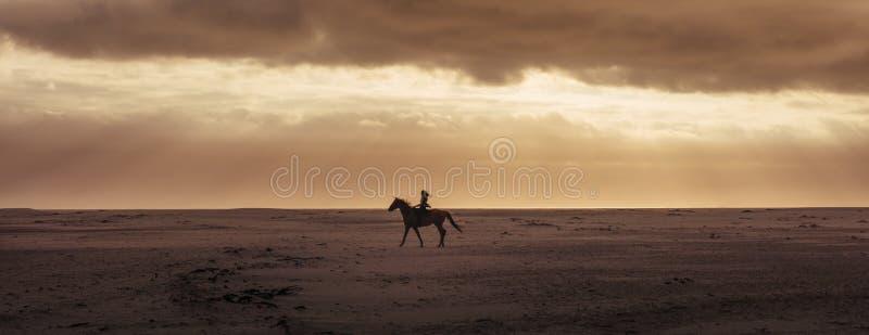 妇女骑乘马的剪影 免版税库存照片