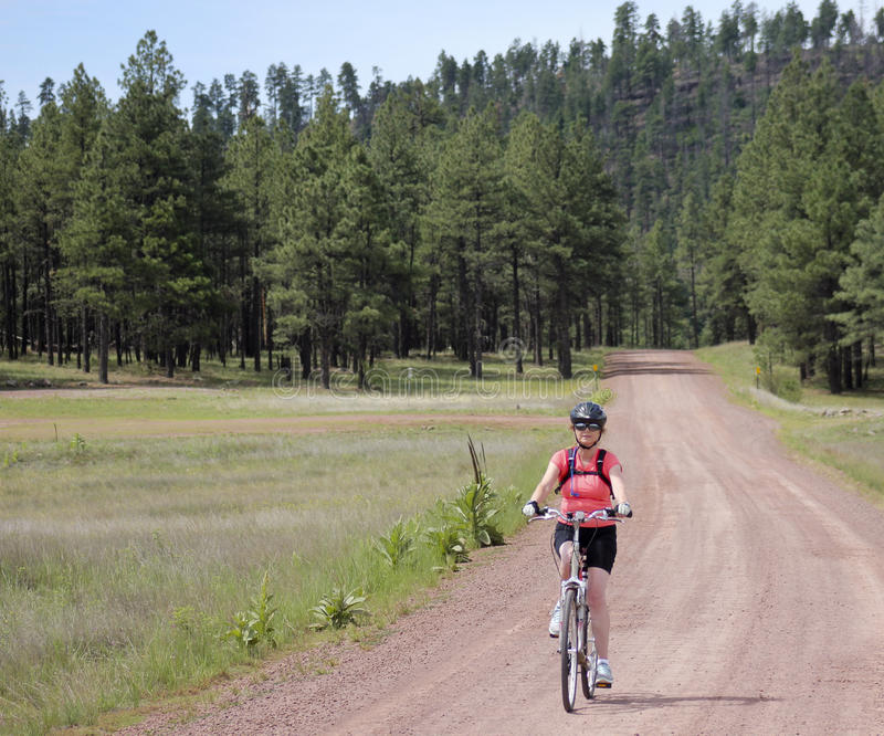 妇女骑自行车者乘坐森林公路 免版税图库摄影