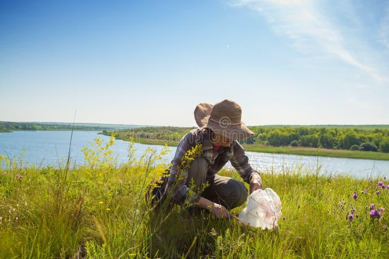 妇女,帽子的,在豪华的绿草中坐 库存图片
