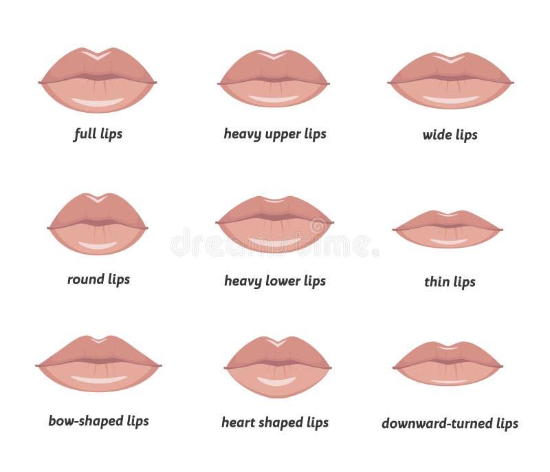 妇女嘴唇的各种各样的类型 免版税图库摄影