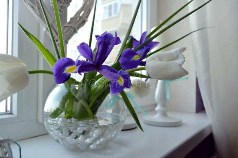 妇女` s喜爱的春天花 库存图片