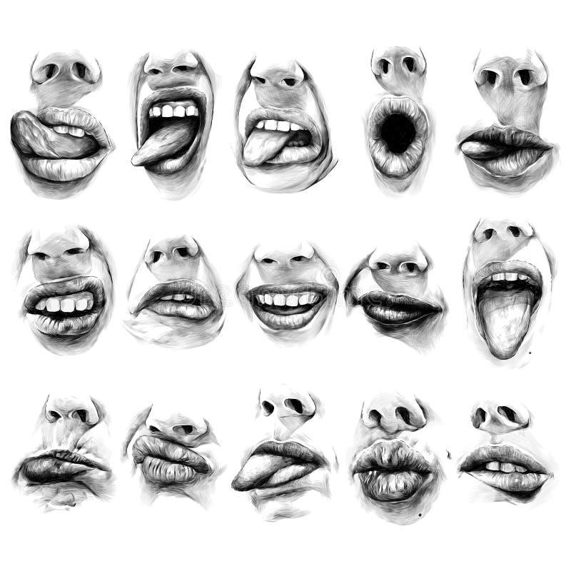 妇女` s嘴唇 库存例证