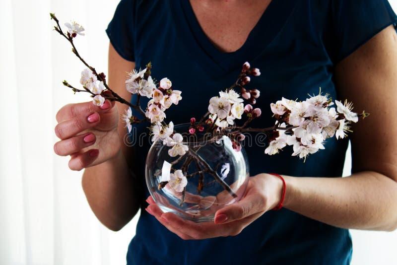 妇女` s手,拿着有春天花花束的玻璃花瓶 免版税库存照片
