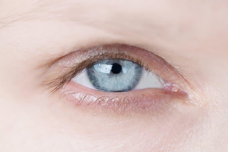 妇女` s蓝眼睛特写镜头  免版税库存图片