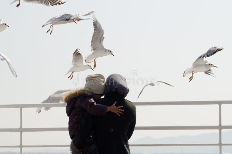 妈妈和孩子在海鸥鸟中 免版税图库摄影