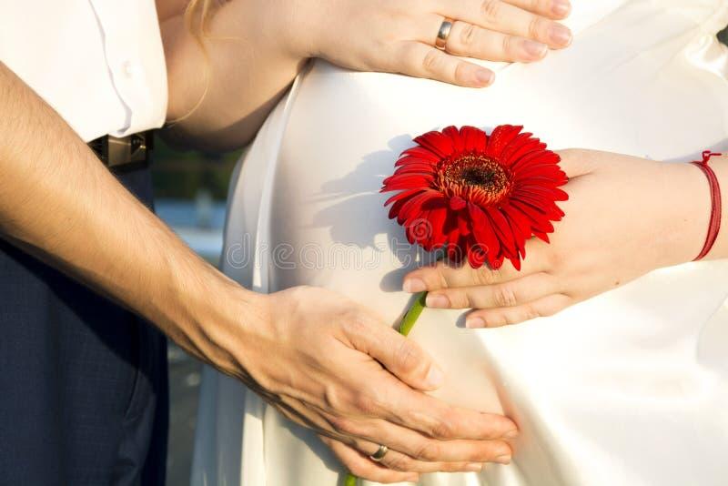 妈妈和爸爸握他们的在怀孕的m的腹部的手 免版税库存照片