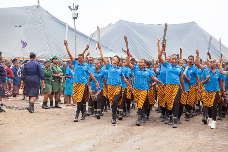 姆巴巴纳,斯威士兰,芦苇节里德舞蹈仪式,每年传统全国礼拜式,一八天庆祝 库存照片