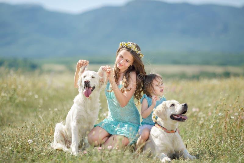 姐妹使用与她的在街道的狗 免版税库存照片