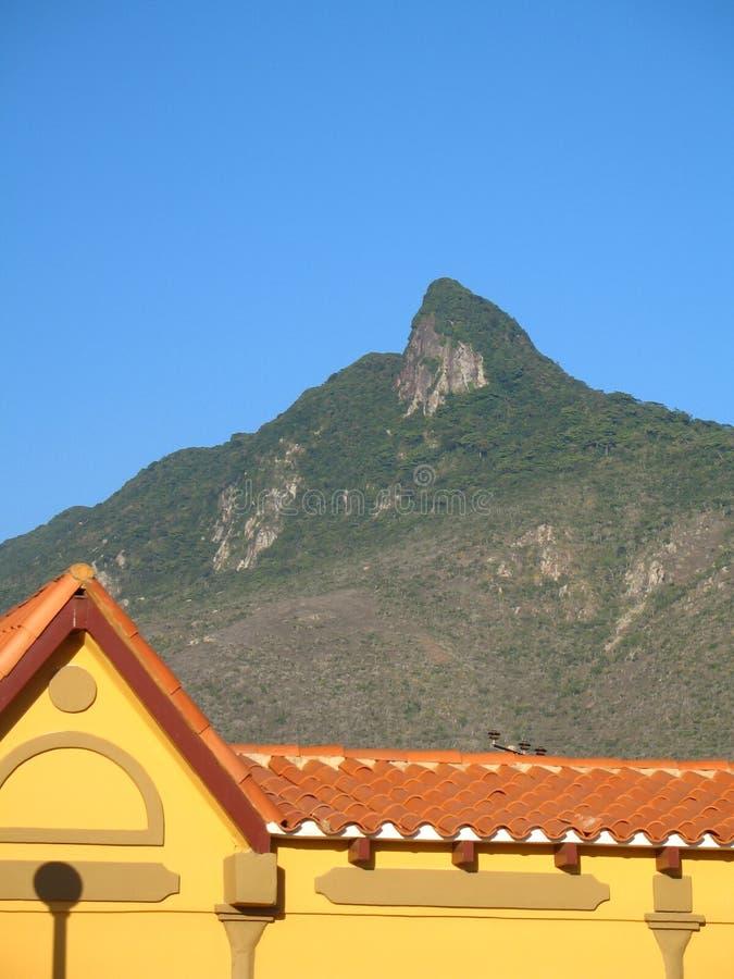 委内瑞拉,塞罗圣安娜自然纪念碑,猎鹰状态 图库摄影