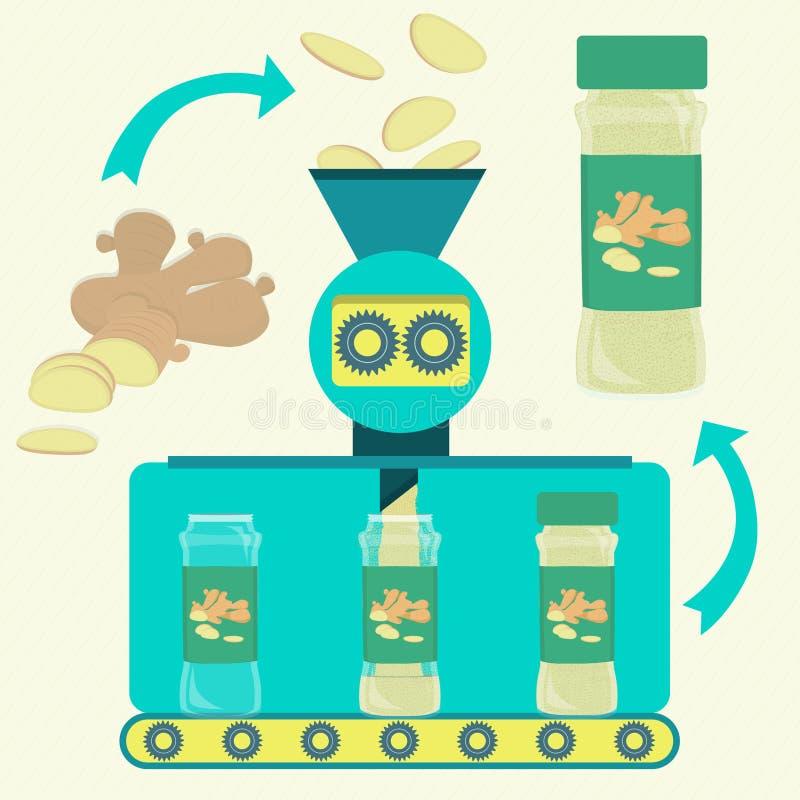 姜粉末的生产 向量例证