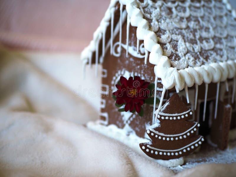 姜饼与红色花的圣诞树在华而不实的屋前面 库存照片