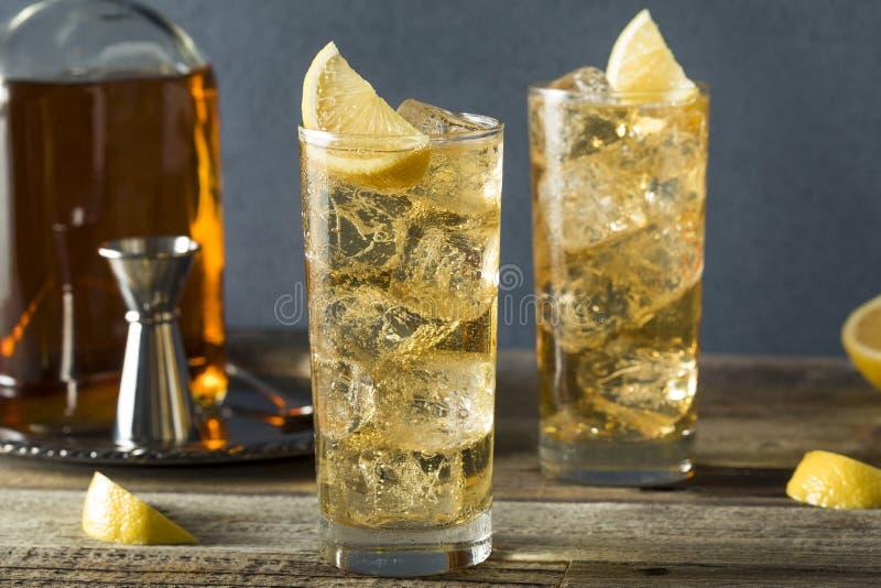 威士忌酒Highball用姜汁无酒精饮料 图库摄影