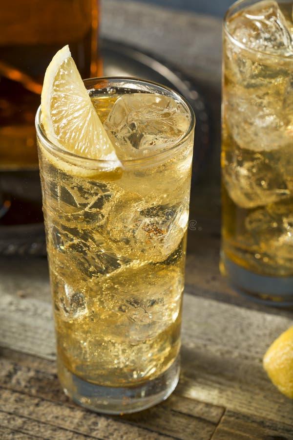 威士忌酒Highball用姜汁无酒精饮料 免版税库存图片