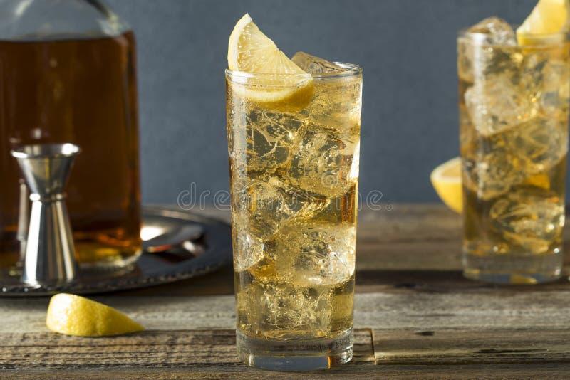 威士忌酒Highball用姜汁无酒精饮料 库存照片
