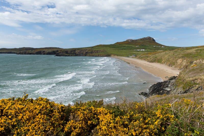威尔士海岸怀特桑兹海湾neasr圣戴维兹英国 免版税库存照片