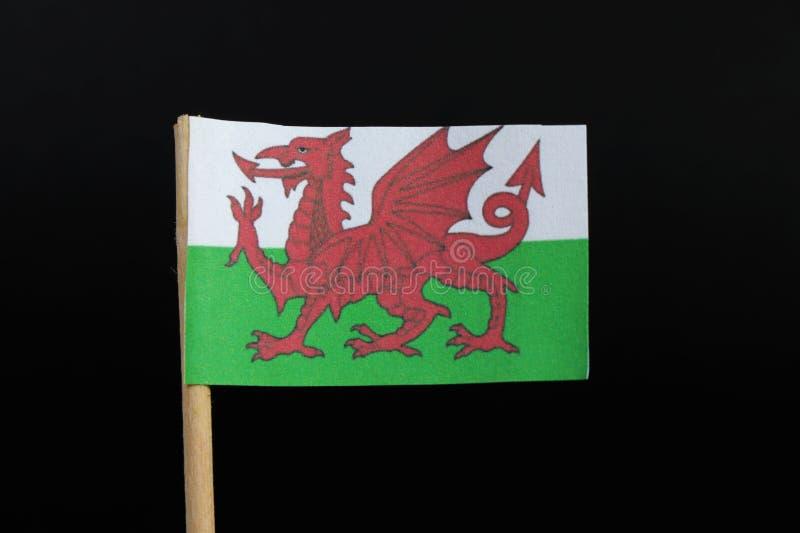 威尔士的官员和非常原始的旗子牙签的在黑背景 每银的中带和Vert,龙包括 免版税库存照片