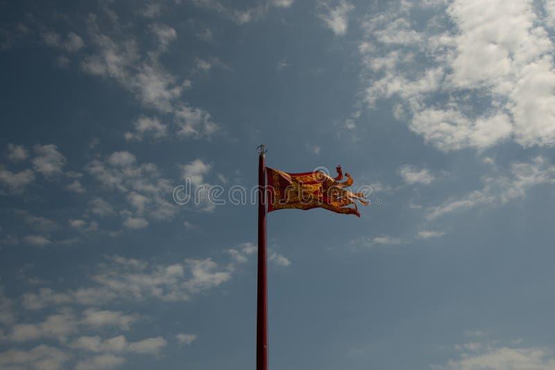 威尼斯旗子  库存照片