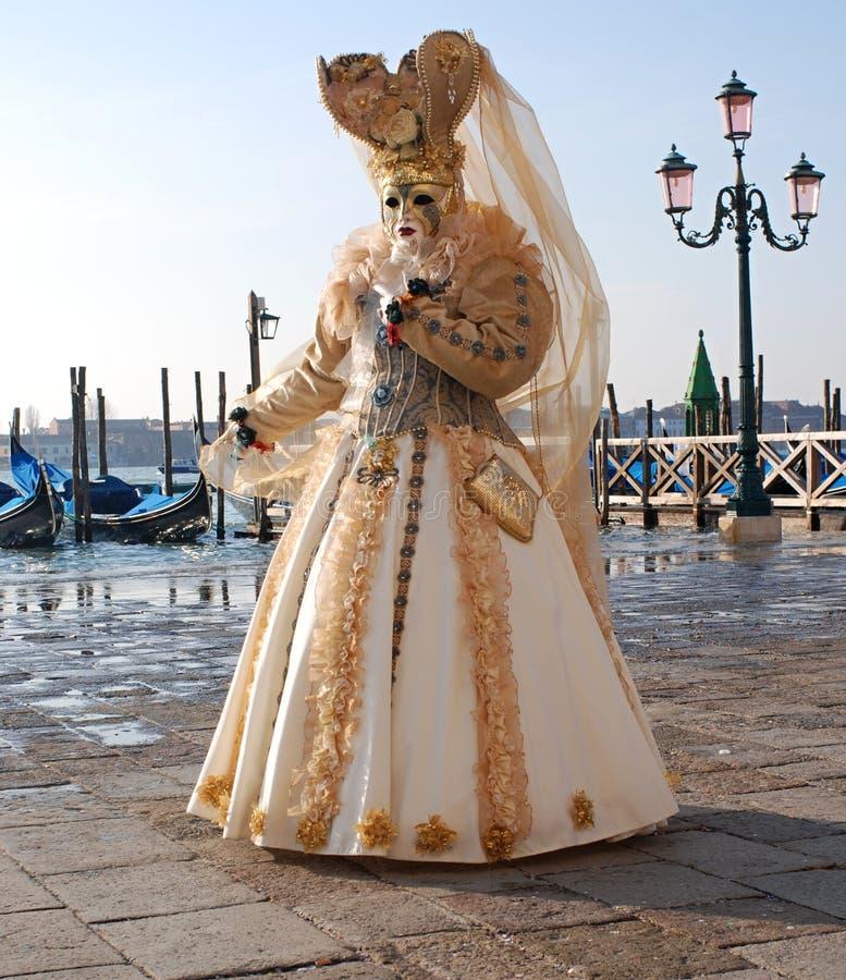 威尼斯2010年 库存照片