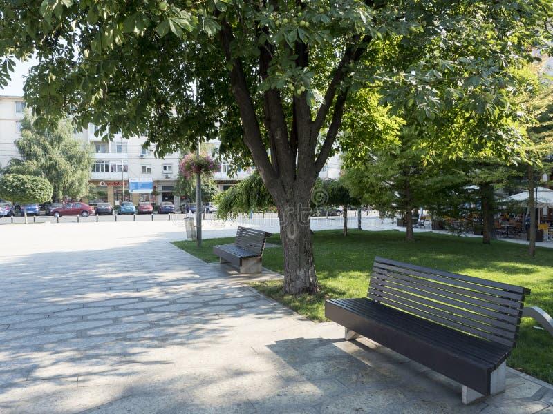 威廉・莎士比亚广场,克拉约瓦,罗马尼亚 免版税库存图片