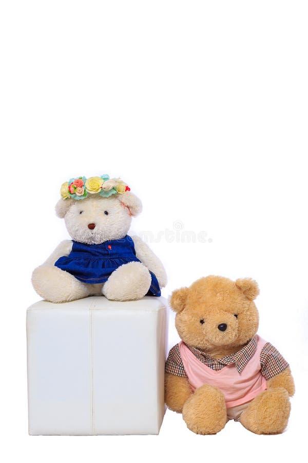 娃娃熊和白色背景 图库摄影
