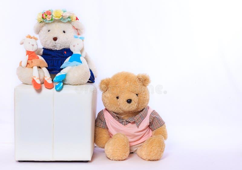 娃娃熊和白色背景 免版税库存图片