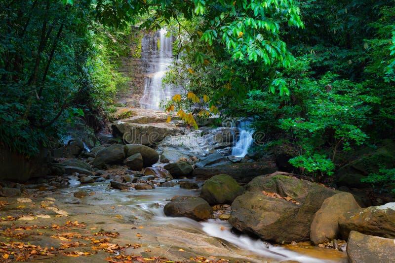 婆罗洲雨林瀑布,流动在Kubah国家公园,沙捞越,马来西亚豪华的绿色密林的田园诗小河  被弄脏的e 免版税库存图片