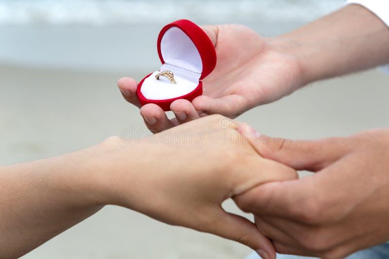 婚姻提议  免版税库存照片