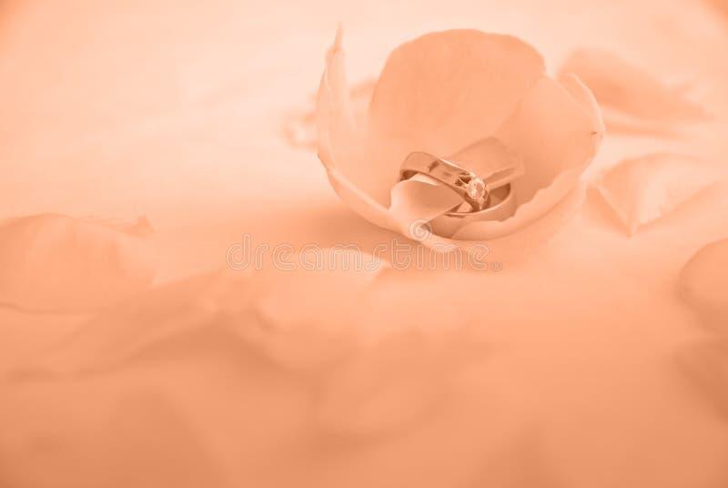 婚姻梦想的环形 免版税库存照片