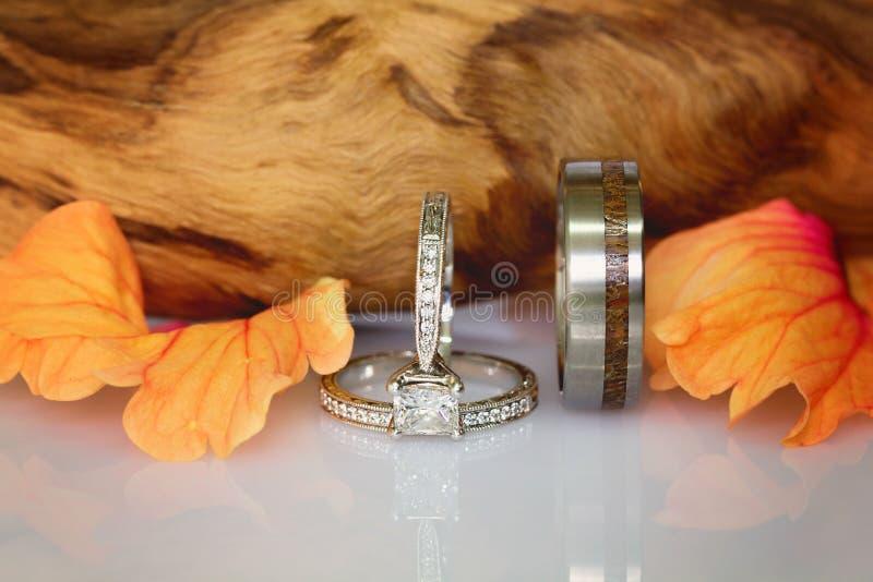 婚戒包括金刚石和插页纹理圈子  免版税库存照片