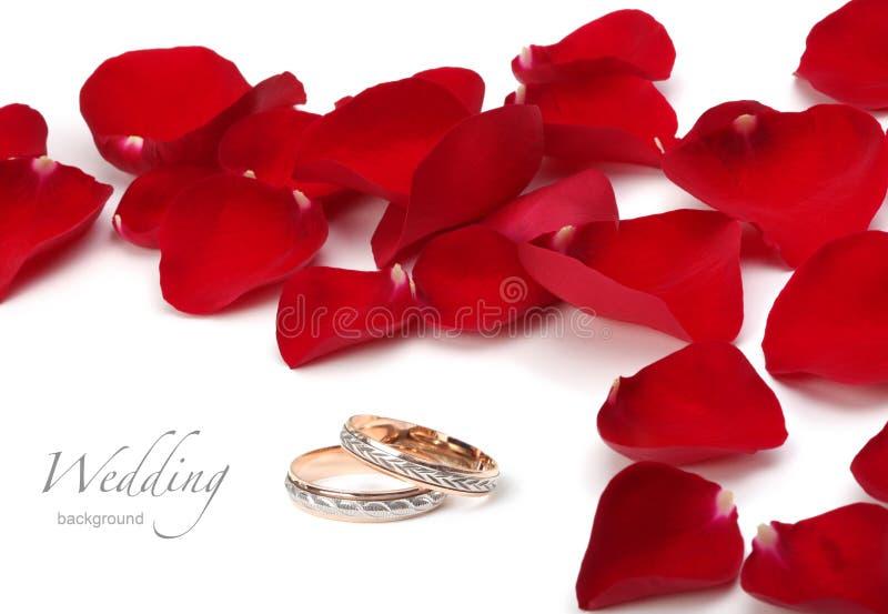 婚戒和玫瑰花瓣 免版税库存图片