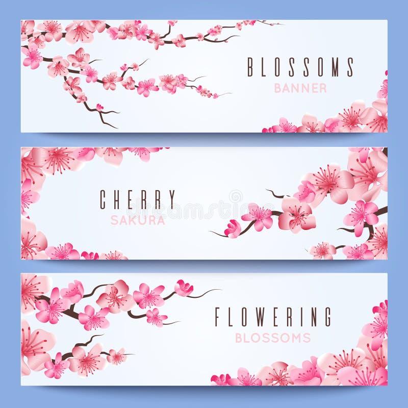 婚礼与春天日本佐仓,樱花的横幅模板 皇族释放例证