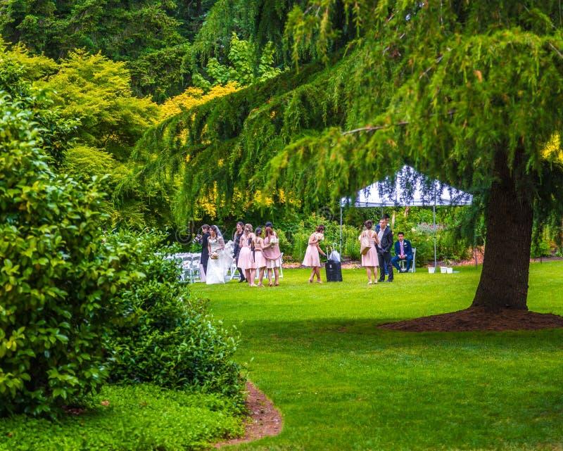 婚礼在公园 免版税库存照片