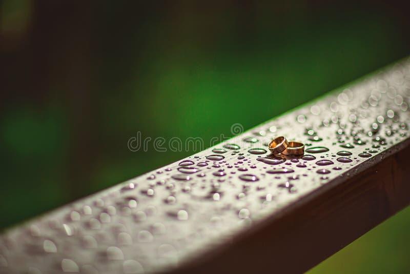 婚礼在黑暗的木背景的金戒指与水,异常的首饰照片滴在雨以后的 免版税图库摄影