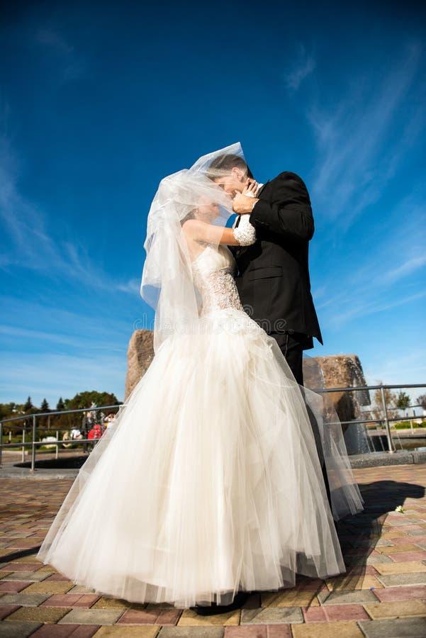 婚礼夫妇亲吻 库存照片
