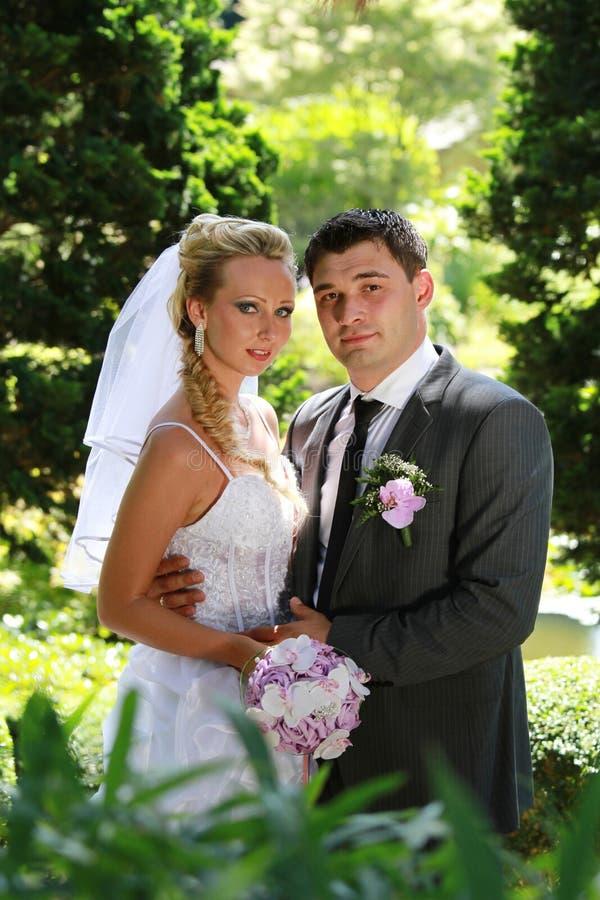 婚礼夫妇纵向 库存图片