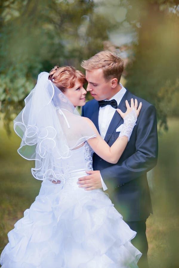 婚礼夫妇 库存图片
