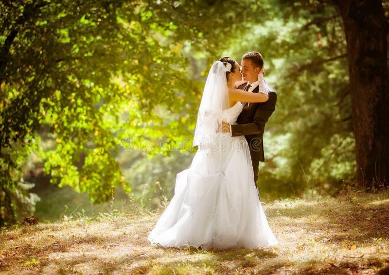婚礼射击了新娘和新郎在公园 免版税图库摄影