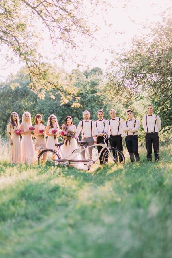 婚礼构成,如果新婚佳偶、女傧相和最佳的人在白色自行车后在晴朗中间 库存照片