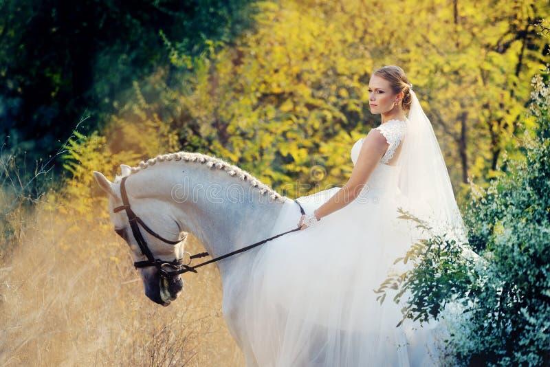 婚姻 有白马的新娘 免版税库存图片