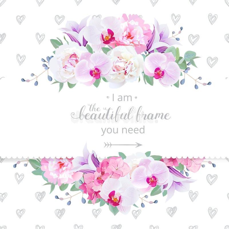 婚姻的花卉传染媒介设计水平的卡片 桃红色和白色牡丹,紫色兰花,八仙花属,紫罗兰色风轮草开花框架 库存例证