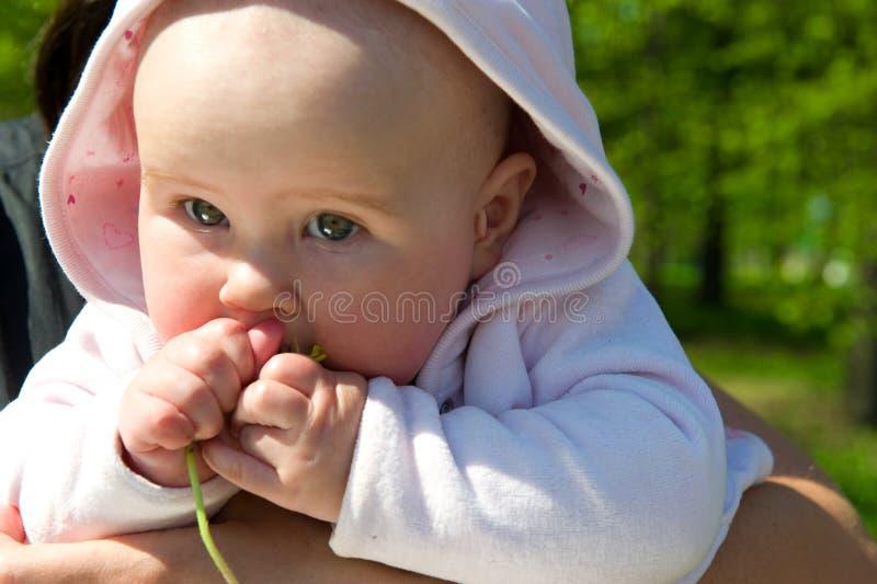 婴孩一点 免版税库存图片