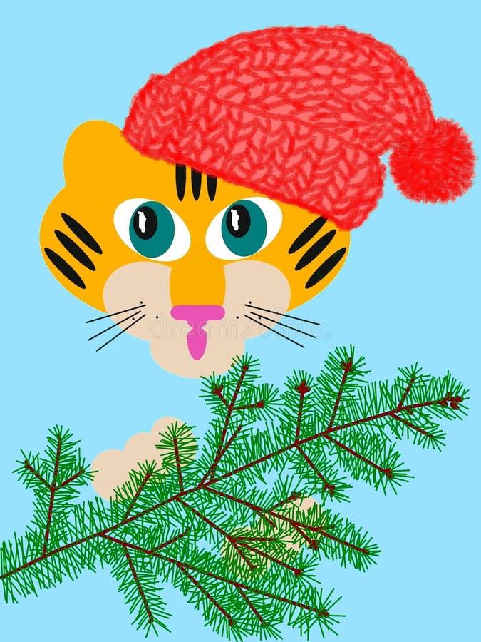 婴孩冷杉老虎结构树 免版税图库摄影