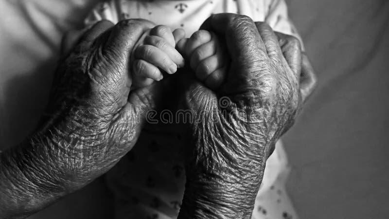 婴孩手在曾祖母手上 曾祖母和她的重孙子 愉快概念的系列 美好的概念性图象 免版税库存照片