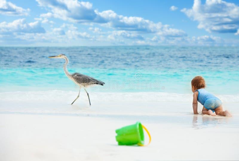 婴孩海滩趣味游戏 库存照片
