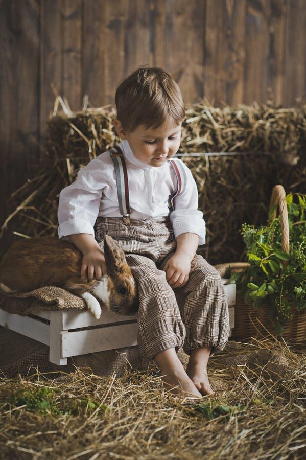 婴孩画象有兔宝宝的干草和白色箱子6043 图库摄影