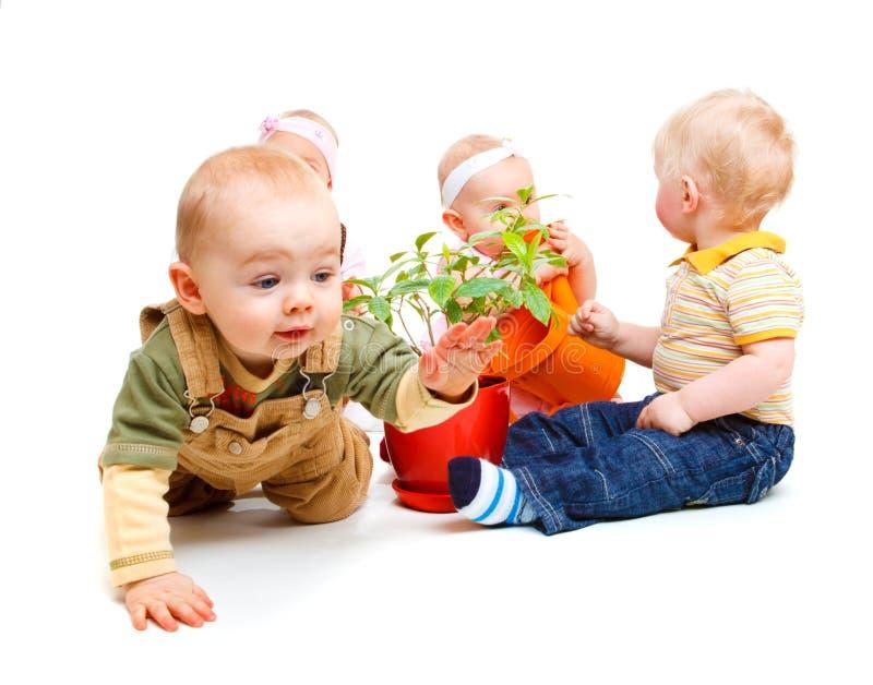 婴孩组 图库摄影