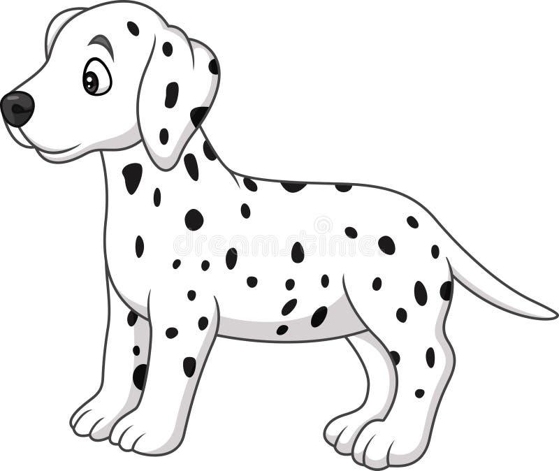 婴孩达尔马希亚狗品种 向量例证