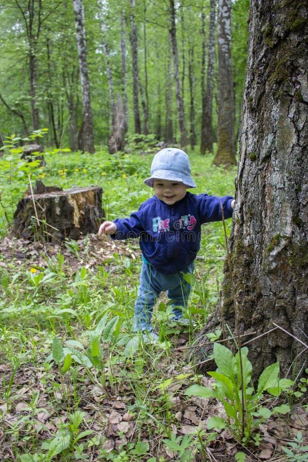 婴孩8-9个月学会通过拿着树干的森林走,步行 微笑在步行的女孩在公园 库存图片