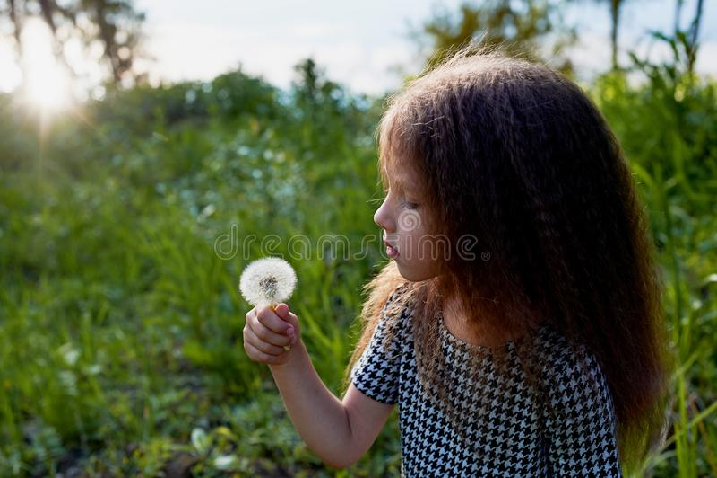 婴孩4年,与蓝眼睛,小卷毛 童年和冒险的美妙的时光 温暖的阳光 举行a 库存照片