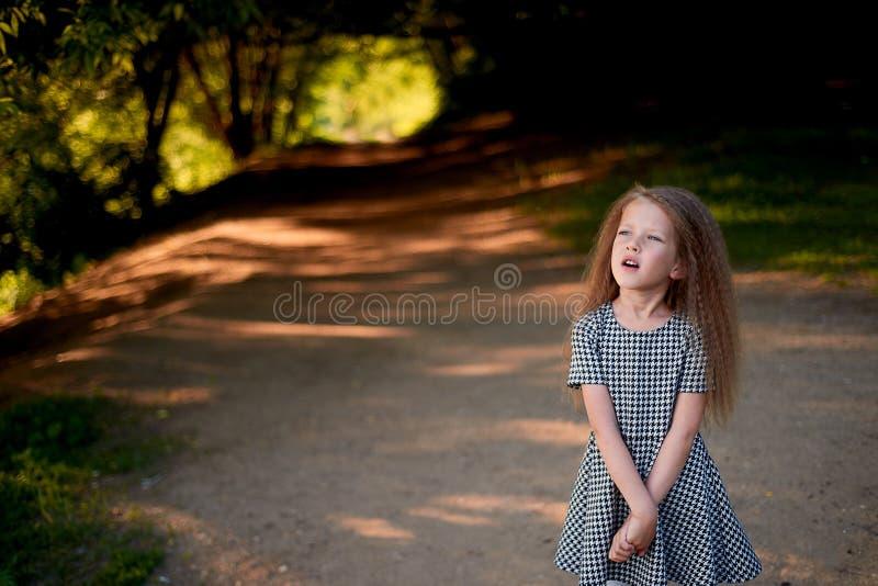 婴孩4年,与蓝眼睛,小卷毛 童年和冒险的美妙的时光 温暖的阳光 站立本质上 图库摄影
